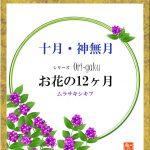 ムラサキシキブ シリーズ 花の12ヶ月 10月号 おしゃれ色紙ケース使用イメージ